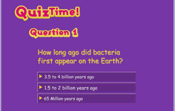 What are Bacteria screenshot of quiz time