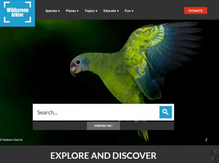 Wildscreen Archive homepage screenshot