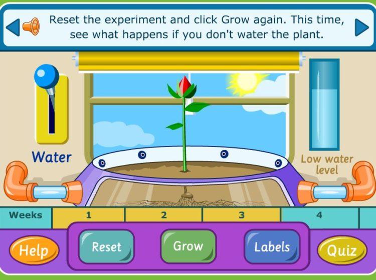growing plants screenshot