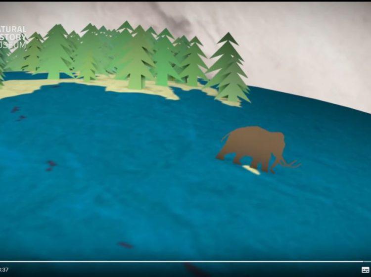 mammoths screenshot