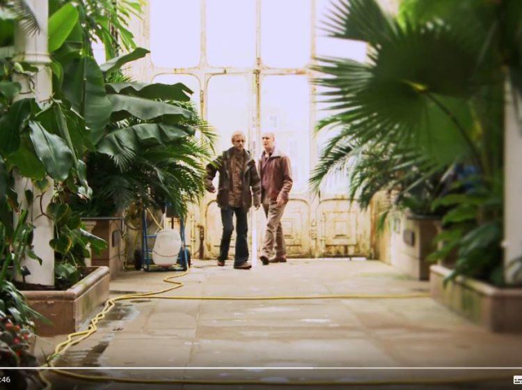 plants under pressure screenshot