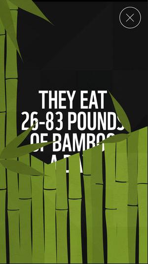 WWF Screenshot