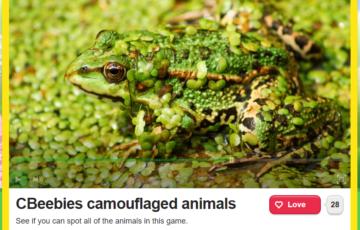 Camouflaged animals Screenshot