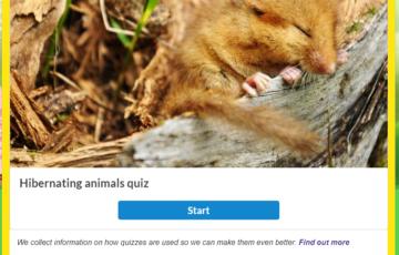 Which animals hibernate? Screenshot