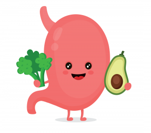 A cartoon stomach holding greens and an avocado